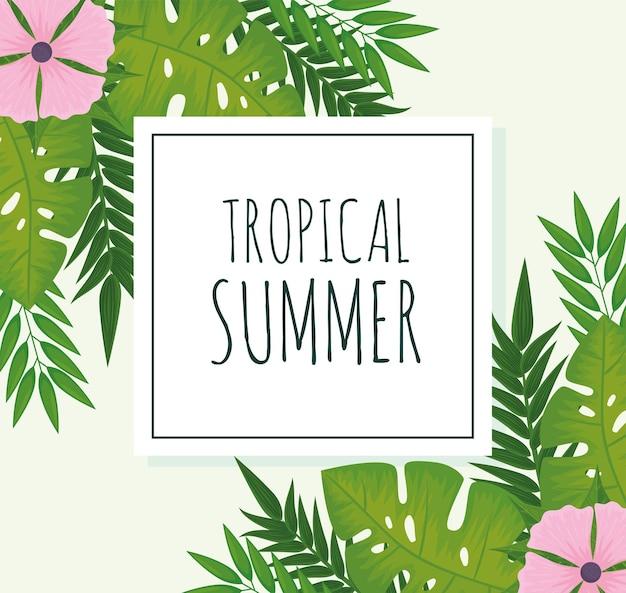 Cadre d'été tropical