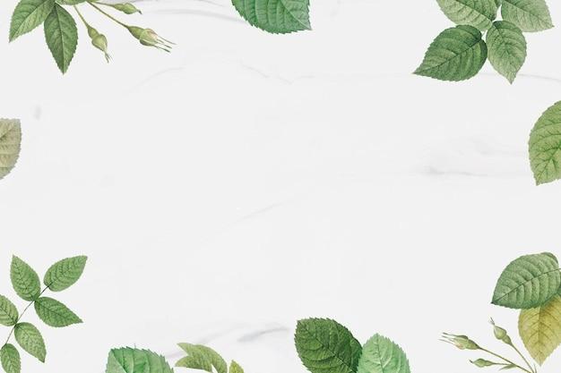 Cadre de feuillage vert