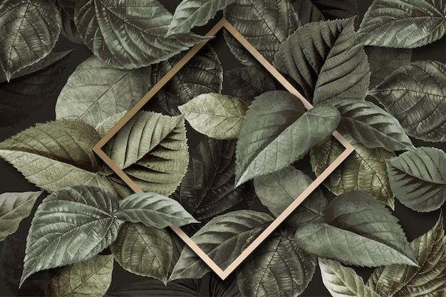 Cadre de feuille de forêt