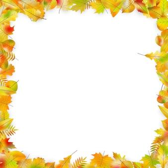 Cadre de feuilles d'automne isolé sur blanc.