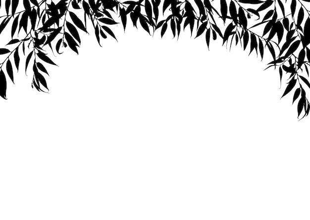 Cadre avec des feuilles isolées sur fond blanc.