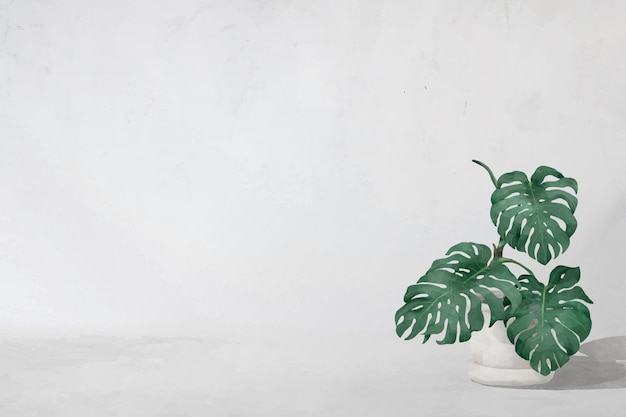 Cadre de feuilles de monstera vierge