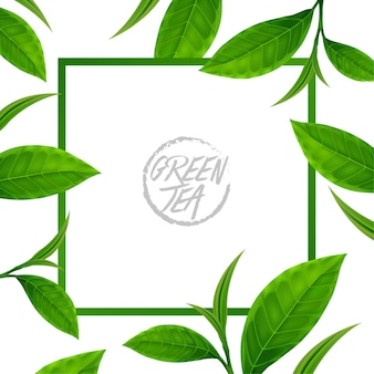 Cadre avec des feuilles de thé vert