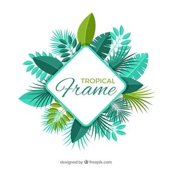 Cadre de feuilles tropicales carrées