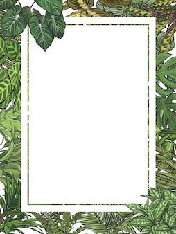 Cadre de feuilles tropicales exotiques