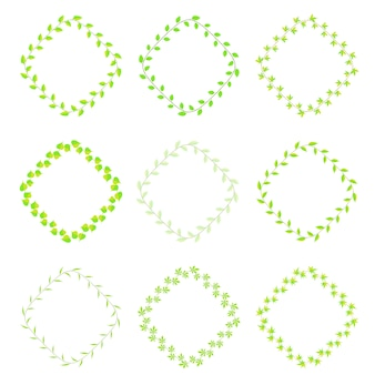 Cadre de feuilles vertes différentes espèces
