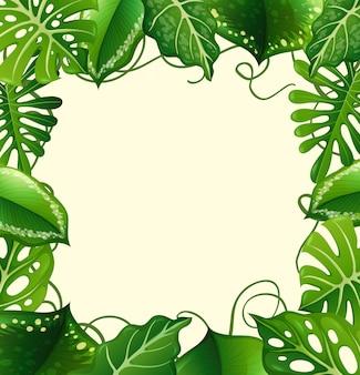 Cadre avec feuilles vertes