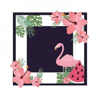 Cadre de flamand avec des fleurs d'été
