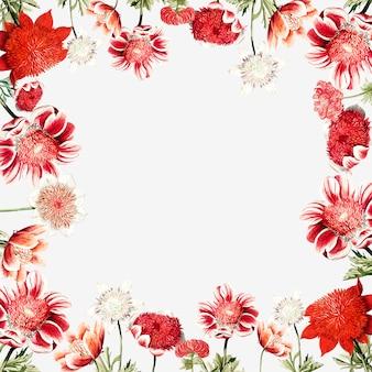 Cadre de fleur d'anémone rouge dessiné à la main avec espace de conception