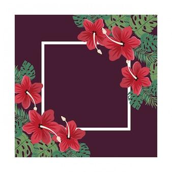 Cadre avec fleur et feuilles