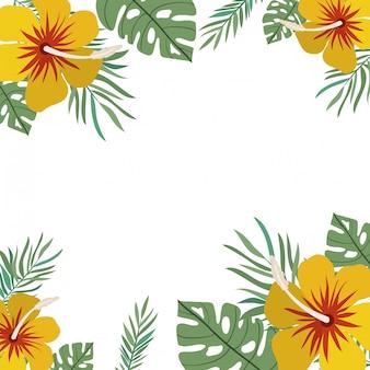 Cadre de fleur et feuilles