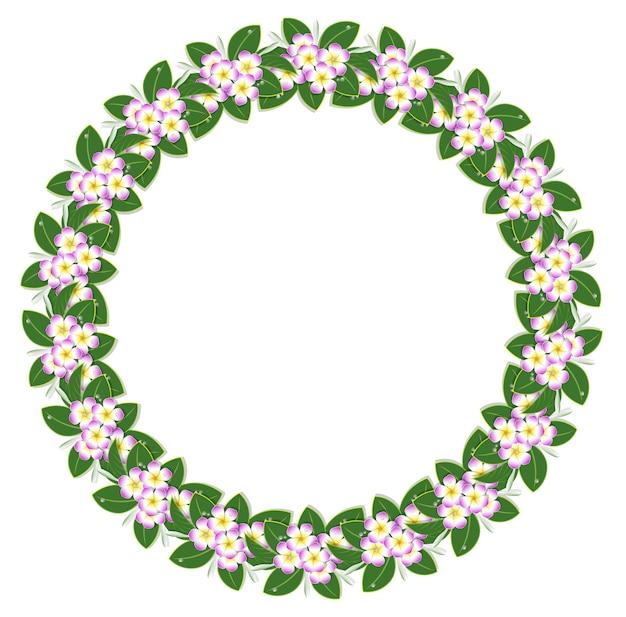 Cadre de fleur de plumeria cercle rose