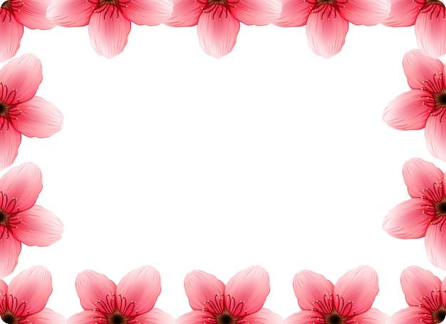 Un cadre de fleurs de cerisier