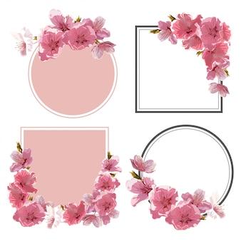 Cadre de fleurs de cerisier.