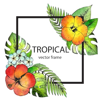 Cadre avec des fleurs et des plantes tropicales dessinés à la main et texture aquarelle