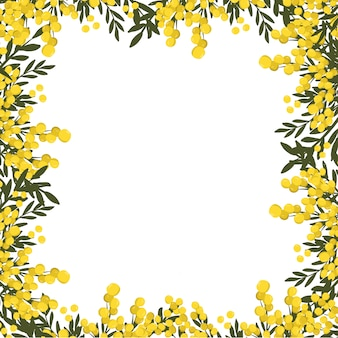 Cadre floral mimosa