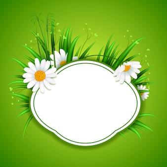 Cadre d'herbe de cercle avec espace de copie