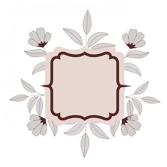 Cadre avec icône isolé plantes et herbes