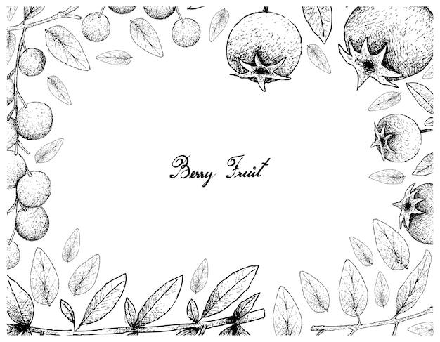 Cadre d'illustration de fruits tropicaux de croquis dessinés à la main
