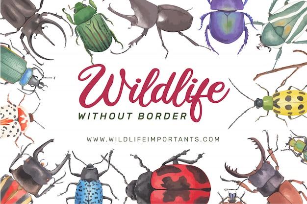 Cadre insecte et oiseau avec diverses illustrations aquarelle de coléoptères.