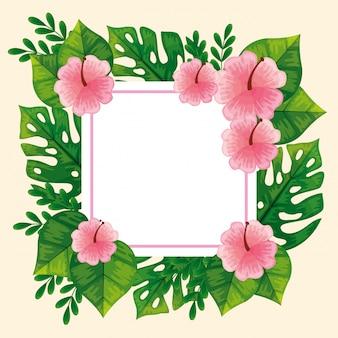Cadre de jolies fleurs roses avec des feuilles