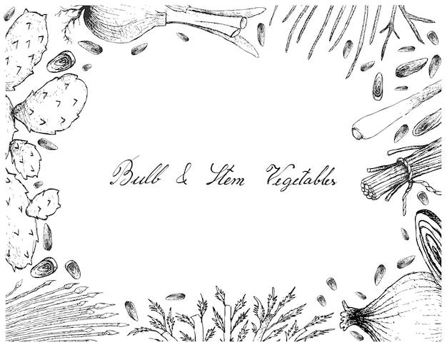 Cadre de légumes ampoule et tige sur fond blanc