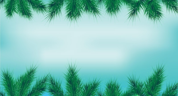 Cadre de noël avec des branches de sapin de haut en bas fond bleu