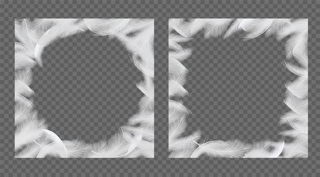 Cadre de plumes mis illustration réaliste de vecteur