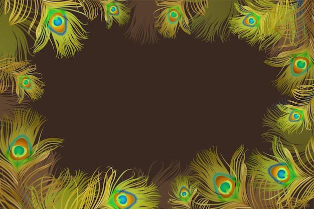 Cadre avec plumes de paon