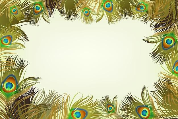 Cadre avec des plumes de paon.