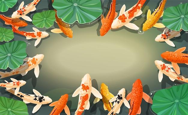 Cadre de poisson koi carpes de dessin animé