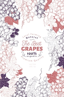 Cadre raisin berry avec fruits