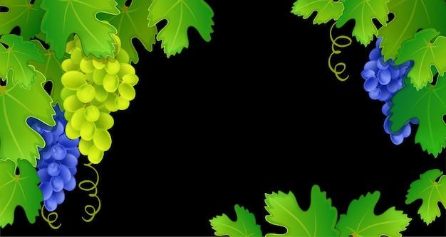 Cadre de raisin sur fond noir