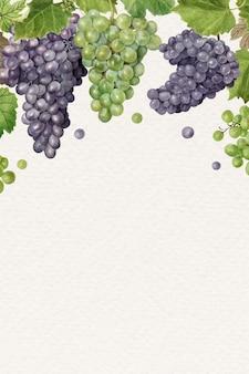 Cadre de raisin frais naturel dessiné à la main