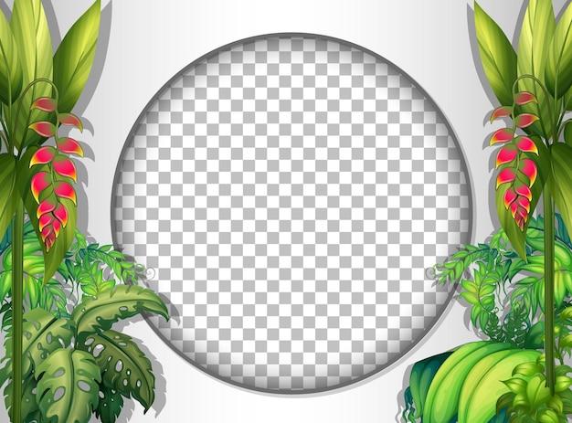 Cadre rond transparent avec modèle de feuilles tropicales