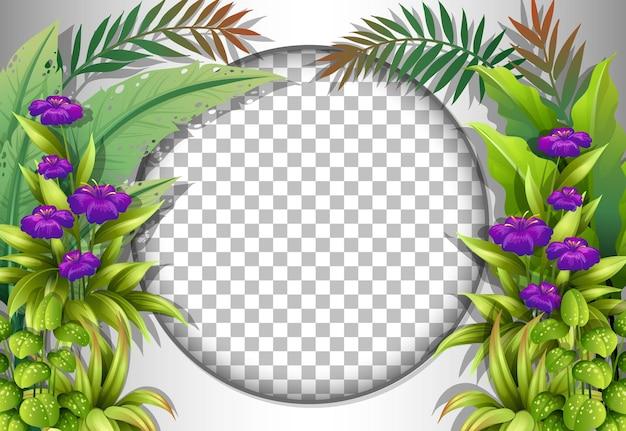 Cadre rond transparent avec modèle de fleurs et de feuilles tropicales