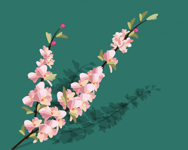 Cadre sakura aquarelle. fond avec des branches de cerisier de fleur.