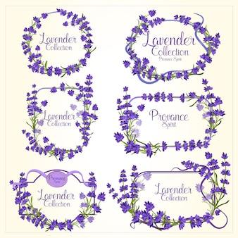 Cadre serti de fleurs détaillées réalistes de lavande