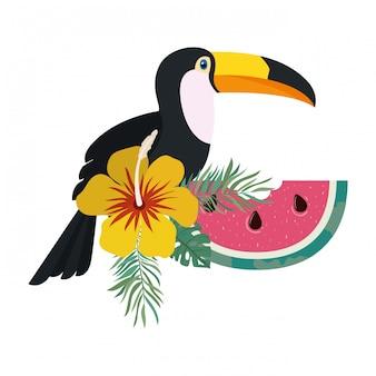 Cadre de toucan et fleur d'été