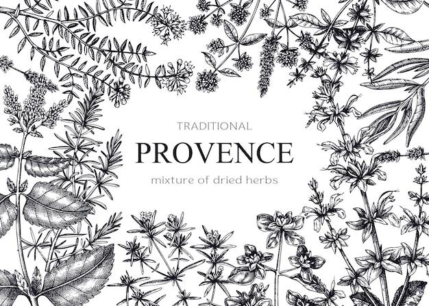 Cadre traditionnel aux herbes de provence avec sarriette marjolaine romarin thym origan lavande. croquis à la main