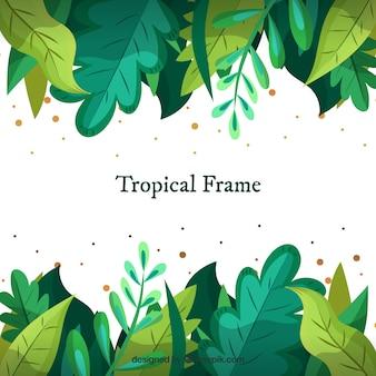 Cadre tropical avec différentes feuilles