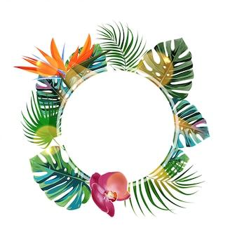 Cadre tropical.