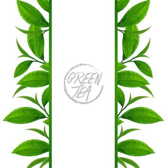 Cadre vertical avec des feuilles de thé vert