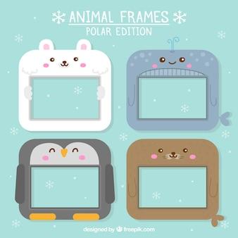 Cadres animal édition polaire