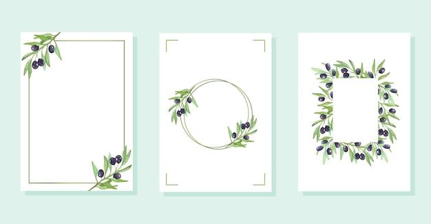 Cadres avec branches d'olivier branches d'olivier aquarelles