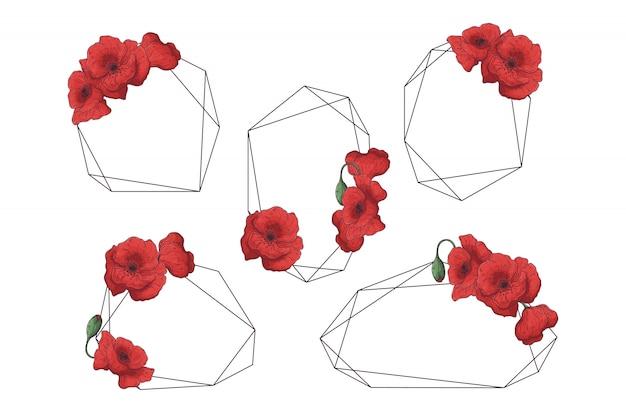Cadres dessinés à la main avec collection de fleurs de pavot
