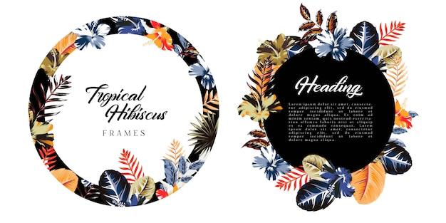 Cadres de fond abstrait tropical et hibiscus