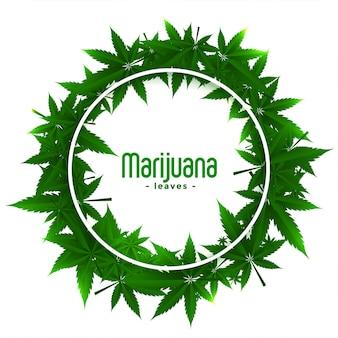 Cadres d'herbe de marijuana de cannabis avec des feuilles