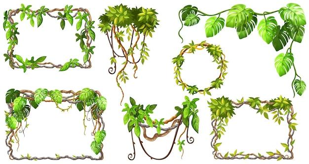Cadres et lianes de branches et de feuilles