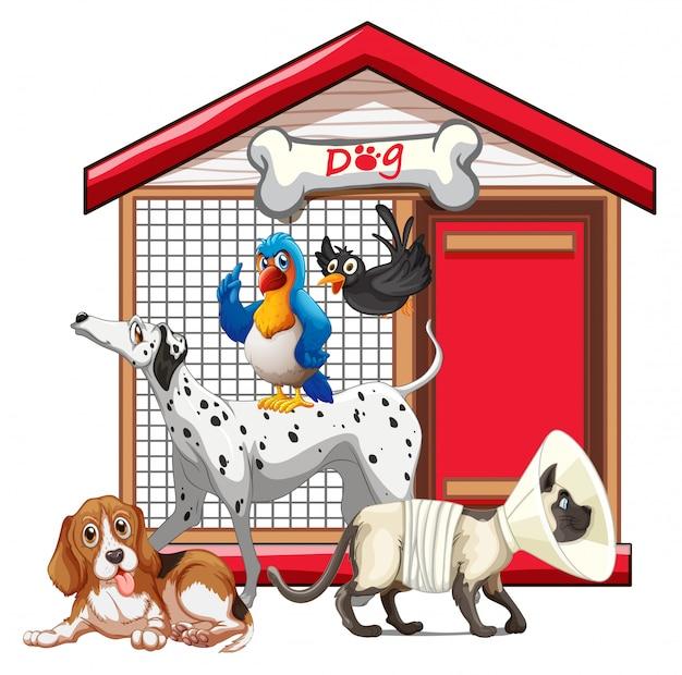 Cage de chien avec dessin animé de groupe animal isolé